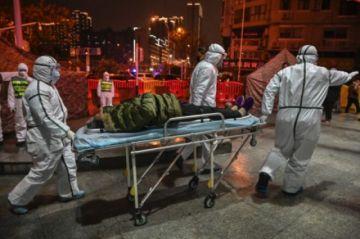 El informe OMS/China sobre el origen del covid apuesta por una transmisión al ser humano vía animal intermedio