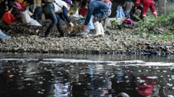Reportan masiva participación en la limpieza del río Rocha en Cochabamba