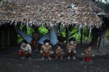 Juez ordena a gobierno brasileño proteger a Yanomami y Mundurucu, víctimas de invasiones