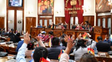 Denuncian a diputado del MAS por supuestos toques obscenos a dos funcionarias
