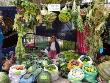 Cumbre de Sistemas Alimentarios de Potosí plantea crear mercados y centros educativos agroecológicos