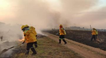 Incendios en San Matías y Roboré se descontrolan, piden auxilio urgente al Gobierno
