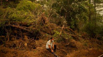 Grecia controla los incendios, pero Europa del sur sigue en alerta