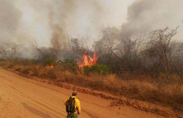 Enviarán 200 policías para coadyuvar a las tareas de control de incendios en Chiquitania