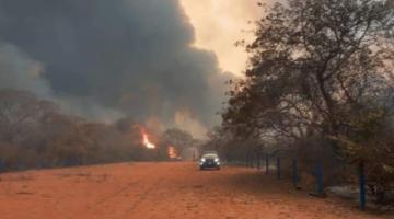 Reportan que 734.568 hectáreas en todo el país quedaron afectadas por incendios forestales