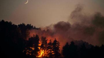 Nuevas evacuaciones por incendios en la isla griega de Eubea y el noroeste de Atenas