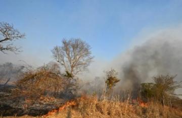 Incendios provocados devastan reservas ecológicas en Bolivia