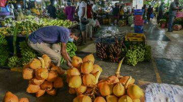 La crisis se agrava en Sri Lanka, que declara el estado de emergencia alimentaria