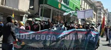 Adepcoca de Armin Lluta reactiva protestas para que el Gobierno atienda sus demandas