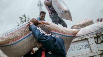 Llegan más de 150 camiones de ayuda humanitaria a la región etíope de Tigré en 2 días