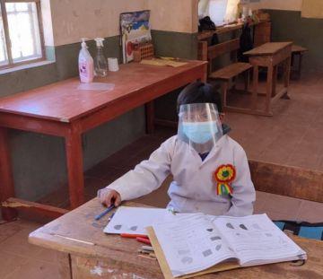 El 75 por ciento de escuelas de Potosí tiene clases presenciales