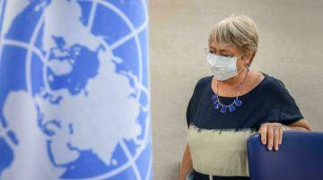 """Las amenazas medioambientales son el """"desafío más importante"""" para los derechos humanos, según la ONU"""