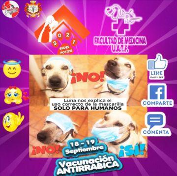 Hoy y mañana se realiza la campaña masiva de vacunación contra la rabia canina en la ciudad