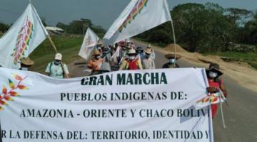 Senadora de CC considera necesaria consolidación de la autonomía para liberación de los pueblos indígenas