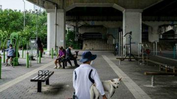 El presidente surcoreano plantea que se prohíba el consumo de carne de perro