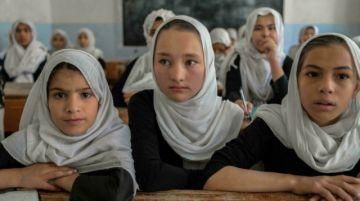 Lo que se sabe hasta ahora del programa de los talibanes en Afganistán