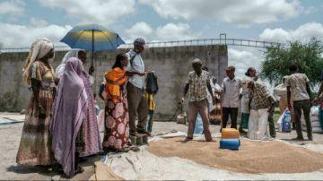 """La ONU alerta de desnutrición """"sin precedentes"""" en la región etíope de Tigré"""