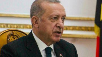 "La justicia europea critica la ley turca contra ""insultos"" a Erdogan"