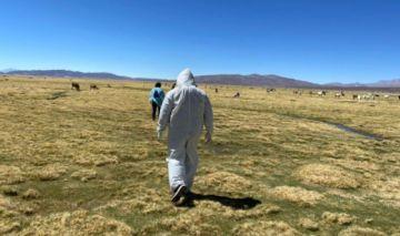 Fallece una mujer boliviana cuando cruzaba la frontera con Chile por paso no habilitado