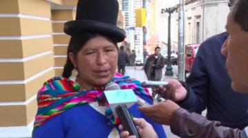 Exvicepresidenta del MAS pide a Arce el cambio de los ministros Lima y Del Castillo