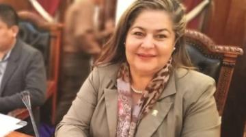 Mamani anuncia proceso penal contra la exdiputada Fernández, tras sentencia 0052 del TCP