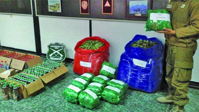 En Chile caen tres bolivianos por contrabandear 67 kilos de hoja de coca