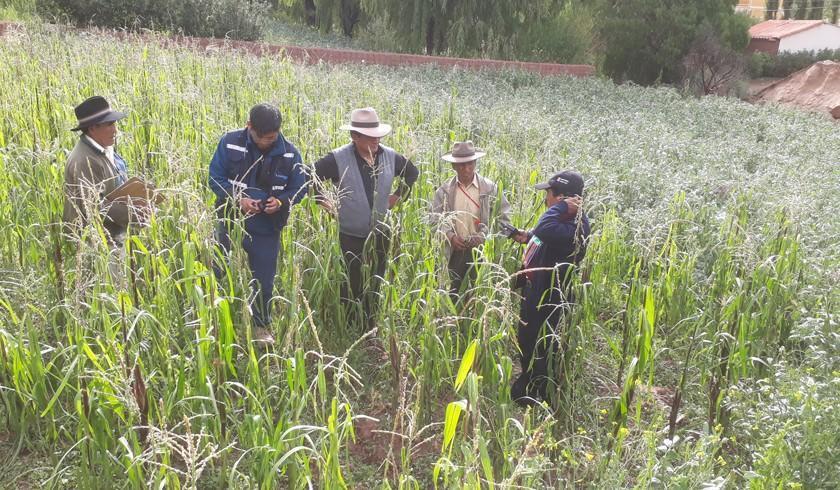 Lluvias aumentan el agua de las represas y garantizan alimentos