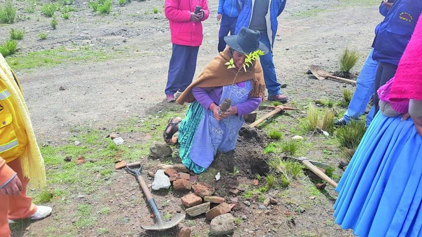 Piden dar continuidad con proyectos de forestación en distritos potosinos