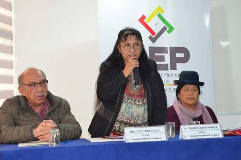 TSE llama a los militantes a votar en las primarias del 27 de enero