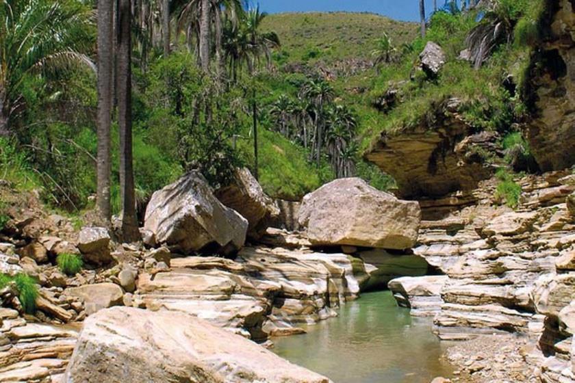 Promocionan el área protegida El Palmar en Chuquisaca
