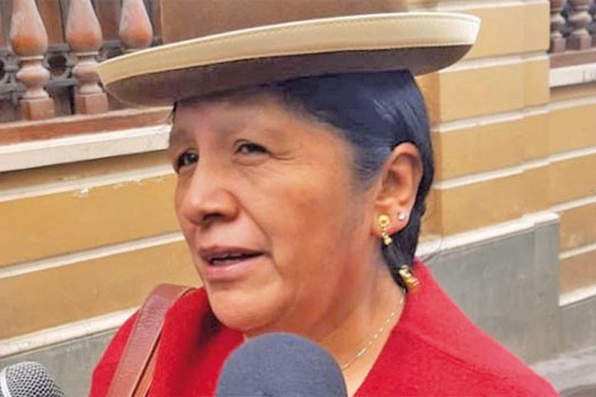 Presidenta del OEP: no había fundamento en denuncia sobre la consulta