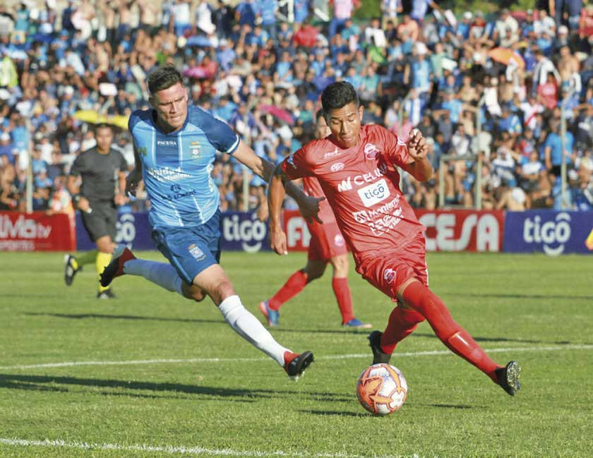 Blooming busca volver a la lucha