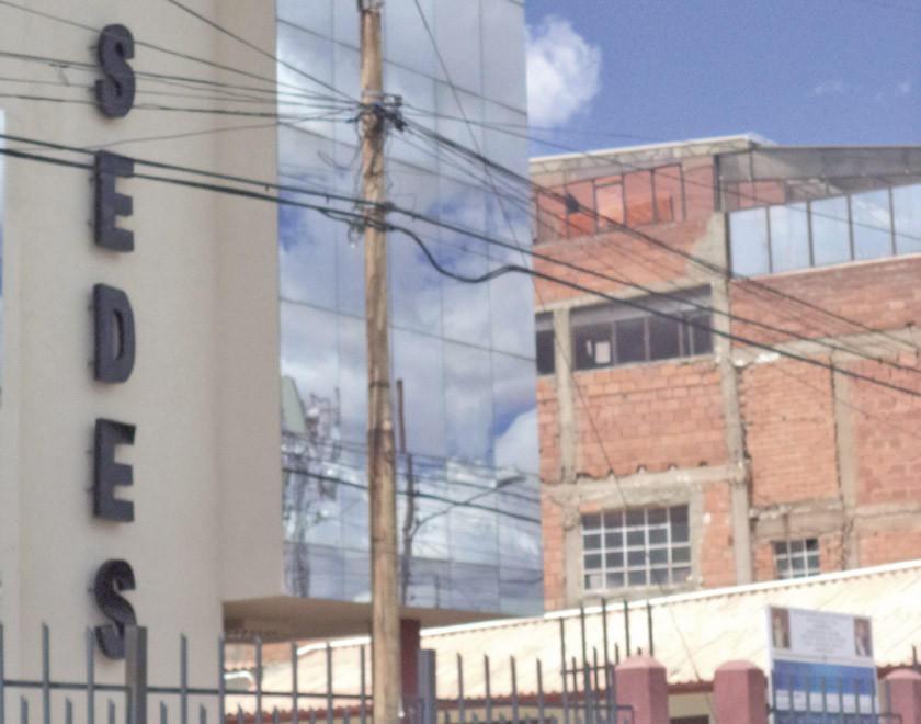 Los casos de rabia siguen en siete en el Departamento