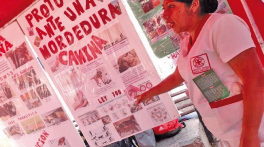 Sedes registra 15 casos de rabia canina en Cochabamba