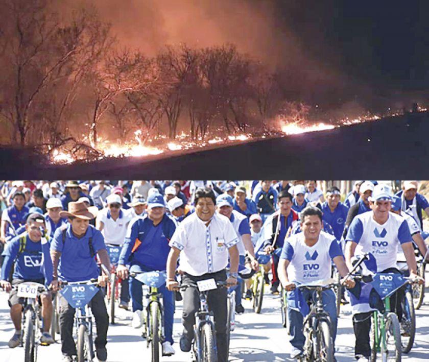 Unen fuerzas contra el fuego en Santa Cruz