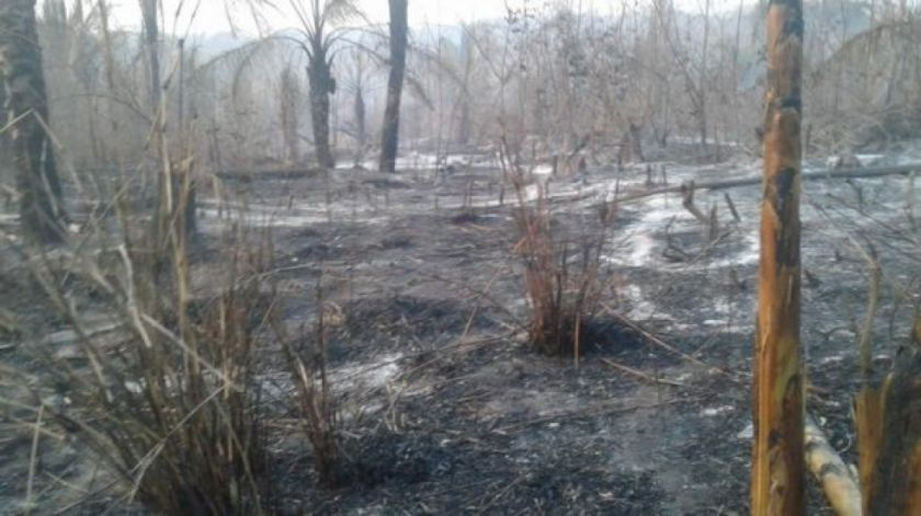 Se suspende el paro cívico en Santa Cruz por los incendios forestales