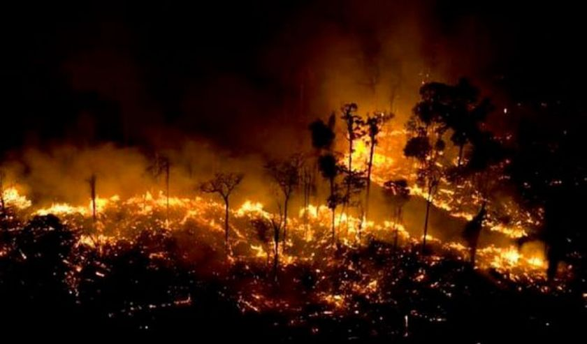 """Resultado de imagen para reiteró que ellas son las """"mayores sospechosas"""" por el desastre causado por la sequía, las altas temperaturas y también por la deforestación."""