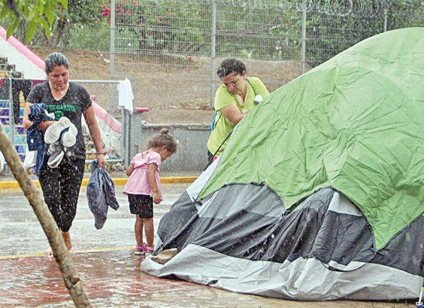 Mayoría de niños migrantes viaja sin sus apoderados