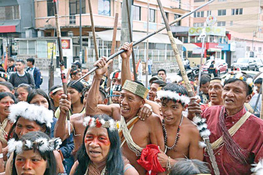 Aprobarán pacto para preservar la Amazonía