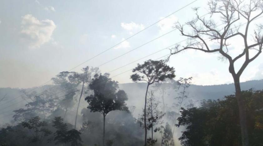 Gobernación de La Paz declara el Madidi como zona de desastre por los incendios