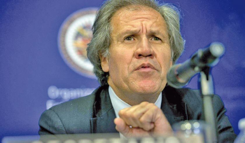OEA emite informe preliminar de auditoría y recomienda nuevos comicios