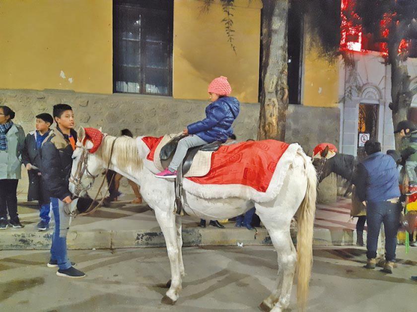 La Intendencia frena alquiler de caballos hasta verificar legalidad