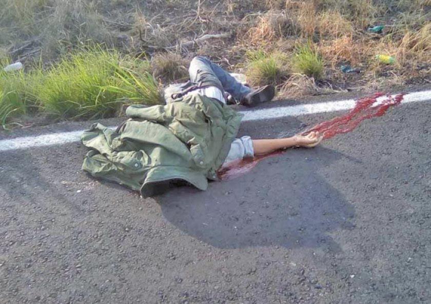 Anciano pierde la vida tras ser arrollado por un auto