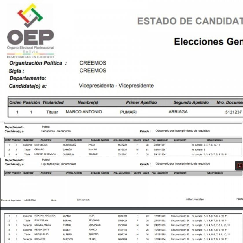 Pumari y Pary están observados en las candidaturas por Potosí