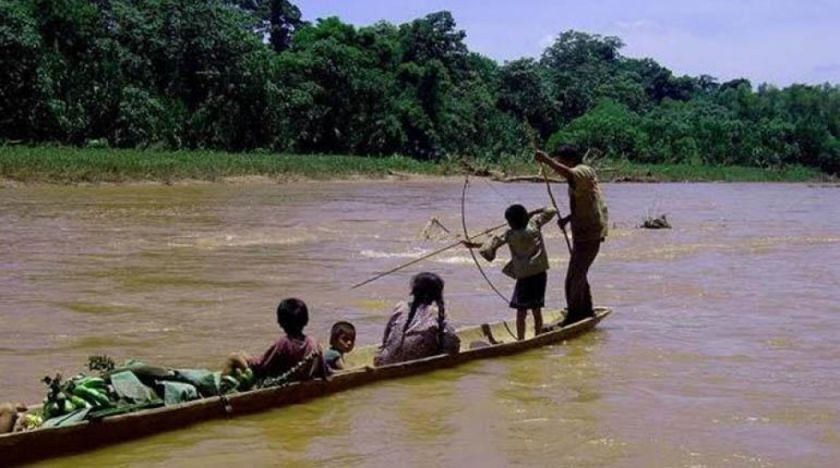 Pueblos indígenas de Beni denuncian tala, caza y pesca ilegales durante la cuarentena