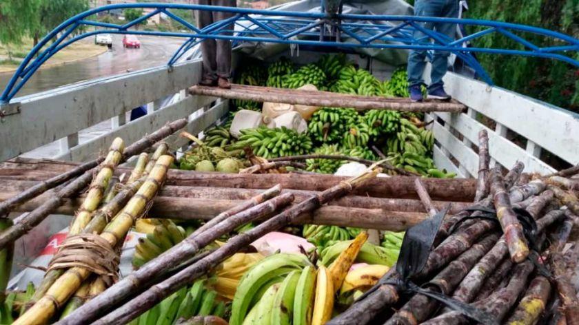 Productores del Trópico donan frutas en Cochabamba