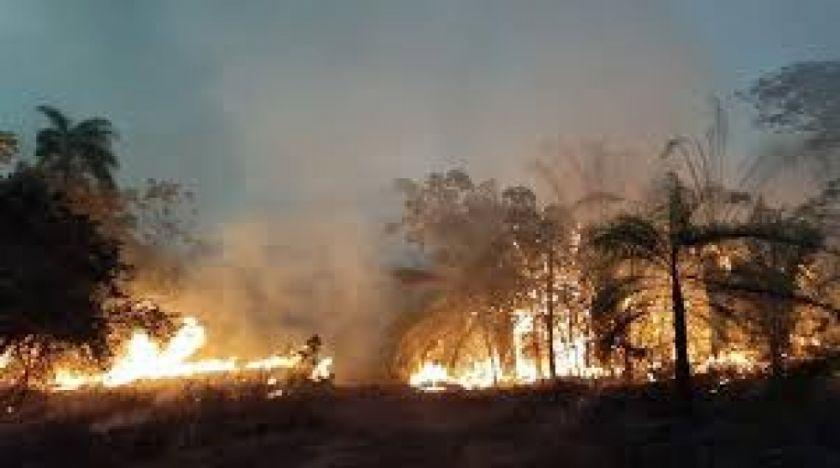 Alertan sobre alto riesgo de incendios en la Chiquitania por incremento de focos de quema