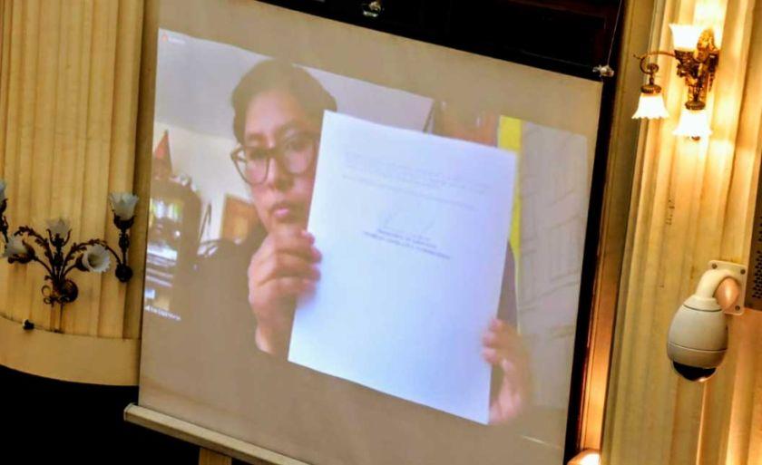 Copa promulga de forma virtual una ley objetada por Añez sobre control de endeudamiento y donaciones