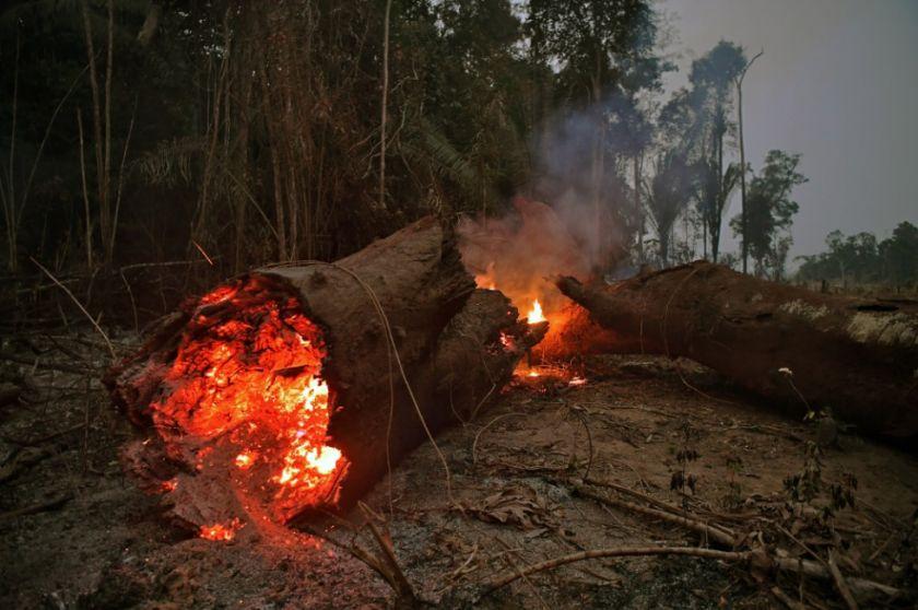 Incendios en la Amazonía brasileña aumentaron en julio