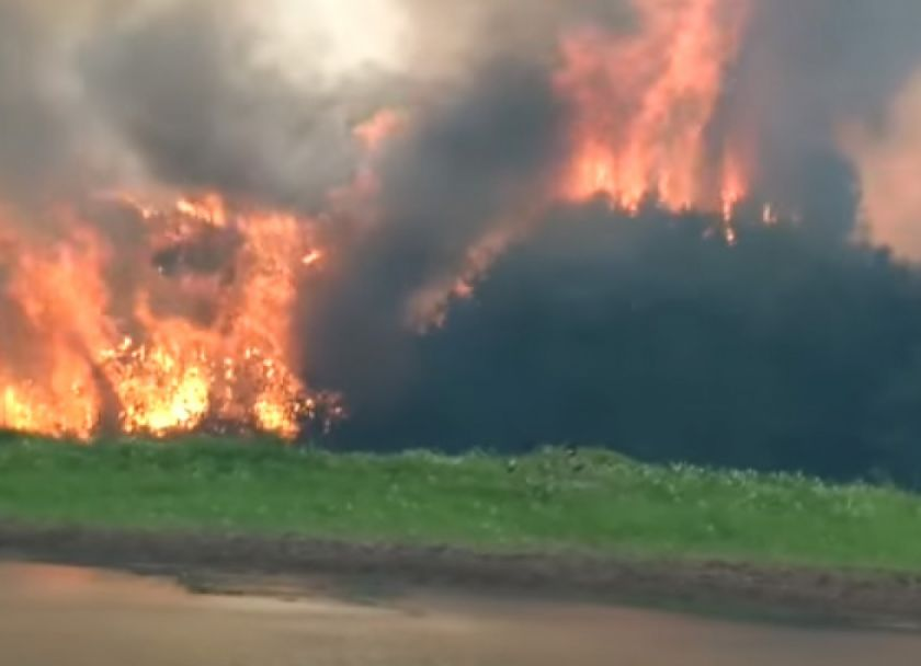 Gobierno informa que se extinguió el fuego en el parque Noel Kempff